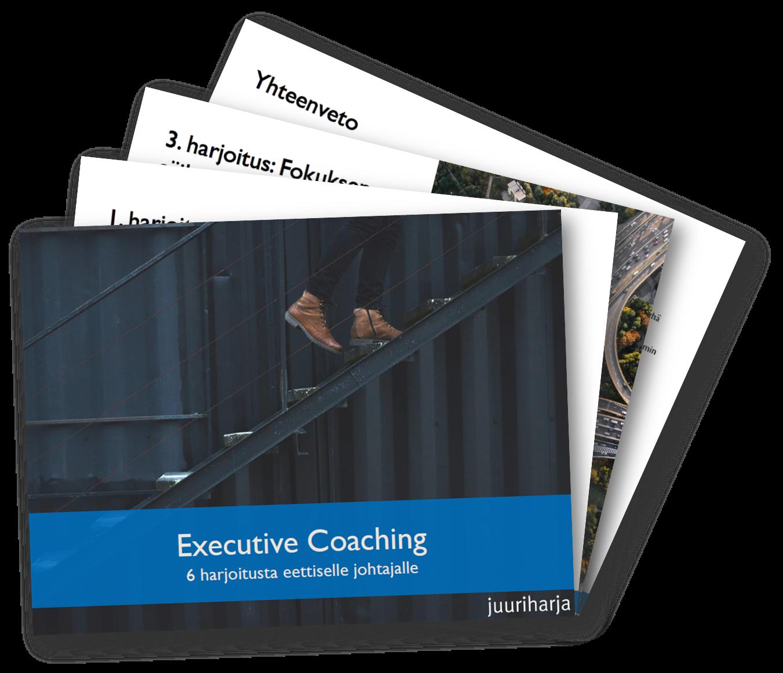 Executive Coaching - 6 harjoitusta johtajalle